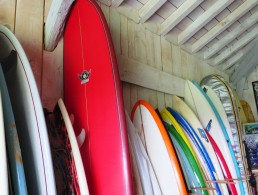 Surf house & surf camp