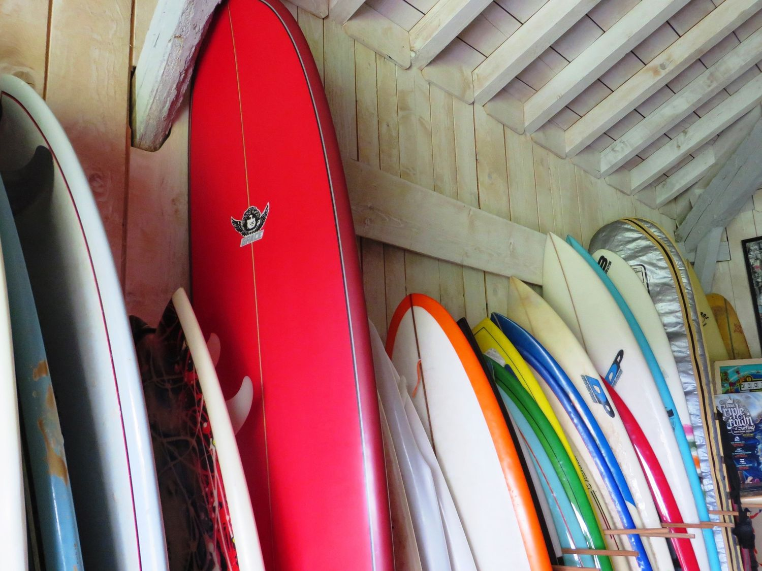 Surf camp y surf house